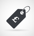 Icon of price tag with pound sterling sign vector image vector image