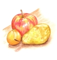 The fruits vector image vector image
