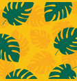 tropical leaves monstera on yellow background vector image vector image