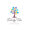 family tree logo design nature symbol vector image vector image