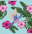hummingbird with tropical flowers and leaves vector image vector image