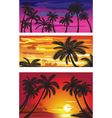 landscapes with palms at sunset vector image vector image