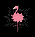 pink flamingo pink flower body shining effect vector image