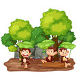 scene with three monkeys in park vector image vector image