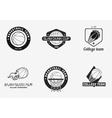 Set of vintage basketball championship logos and vector image