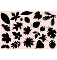 autumn leaves silhouette vector image