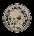dog head animal vector image vector image