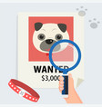 flat hand with magnification find cute dog vector image vector image