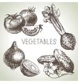 Hand drawn sketch vegetable set eco foods