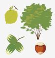 hazel grove vector image vector image