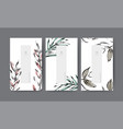 set nature minimal banner for branding packaging vector image vector image