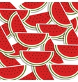 silhouette colorful pattern with slice watermelon vector image