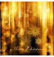 Sparkling lights christmas card vector image