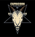capricorn zodiac vector image
