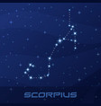 constellation scorpius astrological sign vector image vector image