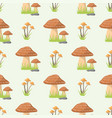 mushrooms seamless pattern different types of vector image vector image