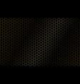 abstract golden hexagon mesh pattern on black vector image