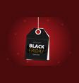 black friday big sale special offer end of season vector image vector image