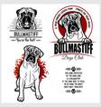 bullmastiff dog - set for t-shirt logo vector image vector image