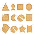 crunchy cracker cookies flat vector image vector image