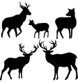 deer and roe silhouettes on the white background vector image vector image