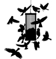 Bird feeder vector image