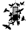 Bird feeder vector image vector image
