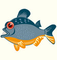 fish piranhas on white background is insulated vector image