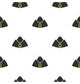 forage cap pattern flat vector image vector image