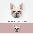 french bulldog head geometric polygonal logo icon vector image