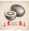 Hand drawn sketch fruit kiwi Eco food background vector image