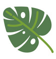 monstera leaf tropical flora and floral vector image