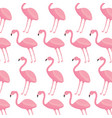 pink flamingo exotic bird decorative seamless vector image