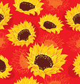 sketch of stylized sunflowers vector image vector image