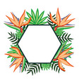 tropical beauty heliconia with leafs exotic vector image