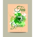 Business card flyer or brochure with green tea vector image vector image