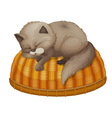 Cat sleeping vector image vector image