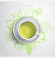 Green tea with circle ecology doodles sketched vector image