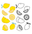 lemon cuts yellow and black and white vector image