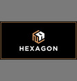 na hexagon logo design inspiration vector image vector image