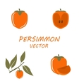 Persimmon icons set vector image vector image