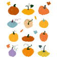 pumpkin various shapes and colors thanksgiving vector image