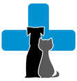 veterinary care icon vector image
