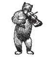 bear playing violin vintage vector image vector image