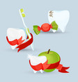 dental care set of images on vector image