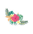 hibiscus hand drawn tropical flower composite vector image vector image