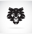 Lion face design on white background wild animals