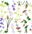 seamless pattern with seven herbs of vector image