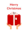 giving a gift christmas vector image