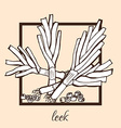 hand drawn leek vector image